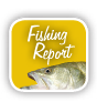 btn fishingReport_static